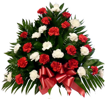 32 Carnation Tribute Mache: Red and White in Newport News VA, Pollards Florist