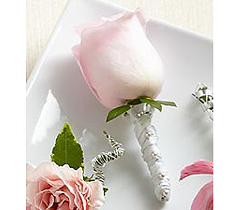 Pink Rose Boutonniere in Stamford CT, Stamford Florist