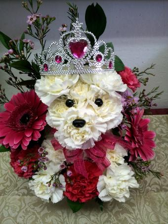 PRINCESS PUP in Oxford MI, A & A Flowers