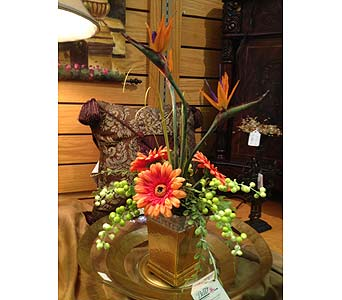 Tropical Silks in New Castle PA, Butz Flowers & Gifts
