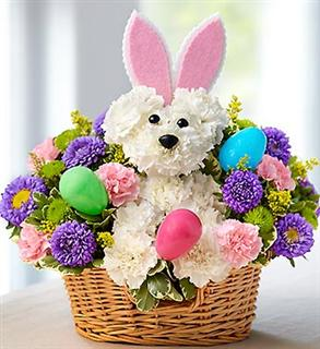 DOG HOPPY EASTER in Jupiter FL, Anna Flowers