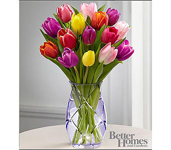 The FTD� Spring Tulip Bouquet by Better Homes and  in Baltimore MD, Gordon Florist
