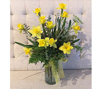 Charity in Bloom - Springy Daffodils in Charleston SC, Tiger Lily Florist Inc.