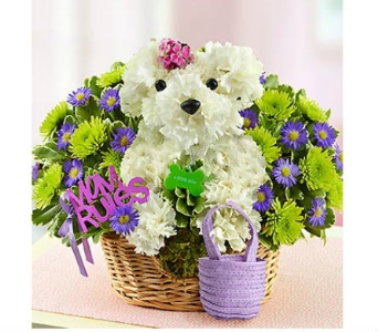 Mama Paws™ dans Watertown CT, Agnew Florist