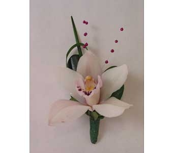 Boutonniere-white mini cymbidium in Bloomington IL, Forget Me Not Flowers