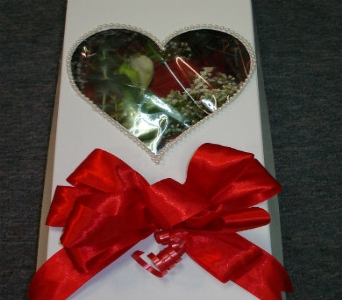 1 dz Red Rose in a Box in Surrey BC, Brides N' Blossoms Florists