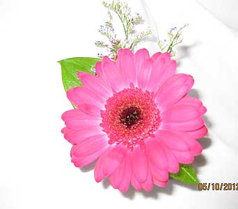 Pink Mini Gerbera Bout in Hales Corners WI, Barb's Green House Florist