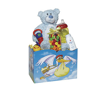 Baby Boy Stork Box in Dallas TX, Goodies from Goodman