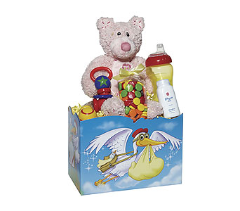 Baby Girl Stork Box in Dallas TX, Goodies from Goodman