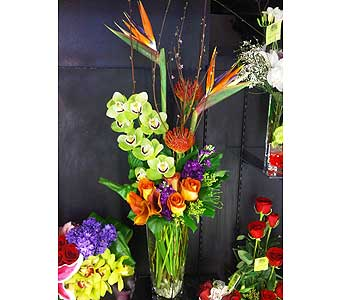Tropical Day  in Las Vegas-Summerlin NV, Desert Rose Florist
