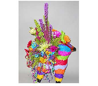 Fiesta Pinata Fresh Arrangement in San Antonio TX, Allen's Flowers & Gifts