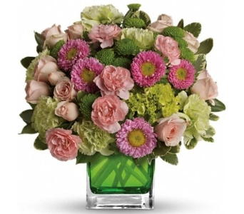 Make Her Day in Norristown PA, Plaza Flowers