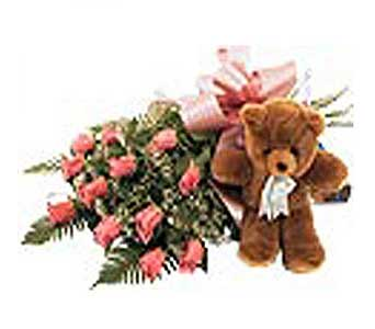 1 Dozen Pink Roses and Teddy in San Antonio TX, Allen's Flowers & Gifts
