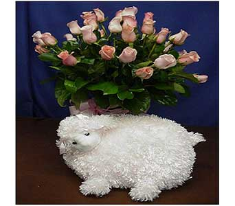 New Baby Girl Roses and Lamb in San Antonio TX, Allen's Flowers & Gifts