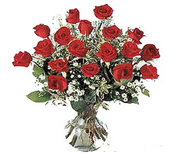 18 Red Roses in a Stylized Glass Container in San Antonio TX, Allen's Flowers & Gifts