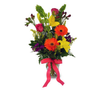 Bold and Beautiful in Indianapolis IN, McNamara Florist