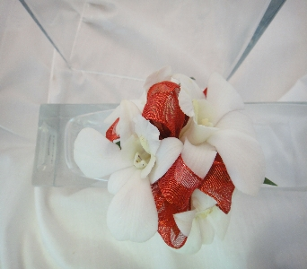 White Orchid Accented with Red in Greenville SC, Expressions Unlimited