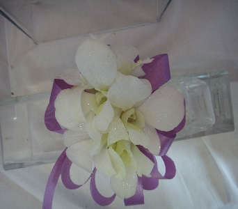 White Orchid Accented with Purple in Greenville SC, Expressions Unlimited