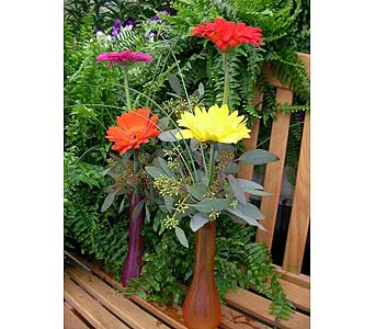 Gerbera Budvase in Rochester MN, Sargents Floral & Gift