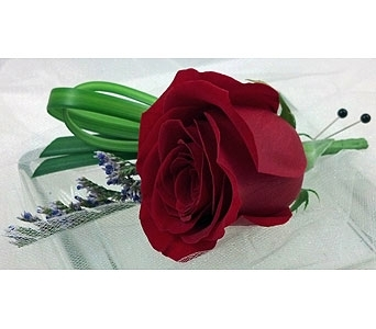 Classic Red Rose Boutonniere in Raleigh NC, North Raleigh Florist