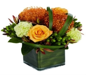 Protea Cubed  in Princeton, Plainsboro, & Trenton NJ, Monday Morning Flower and Balloon Co.