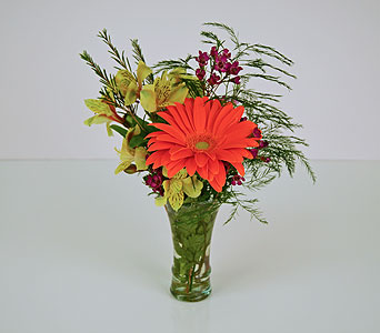 Summer Orange in Indianapolis IN, Gillespie Florists