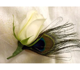 White Rose Boutonniere with Peacock Feather in Rosemount MN, Rosemount Floral