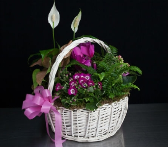 Garden Basket in La Jolla CA, Adelaide's Florists and Decorators