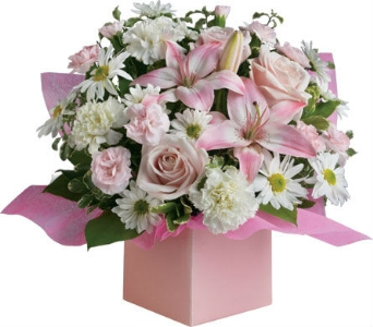 Blooming Beauty in flower-delivery NSW, Mona Vale Florist & Nursery