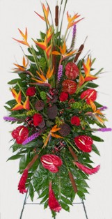 Tropical Wonder Spray in Lake Charles LA, A Daisy A Day Flowers & Gifts, Inc.