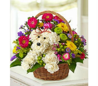 a-DOG-able� in a Basket in Lewisville TX, D.J. Flowers & Gifts