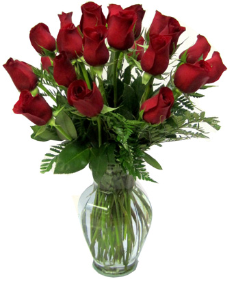 Two Dozen Red Roses in Fort Myers FL, Fort Myers Florist, Inc.