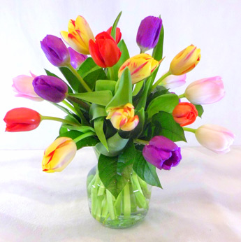 Bulbs of Colors  in Raleigh NC, Fallons Creative Flowers