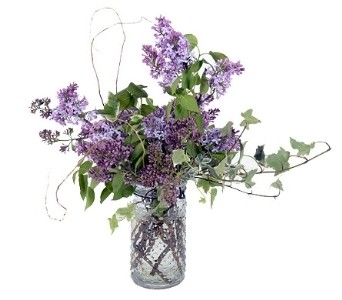 Simply Lilac in Silver Spring MD, Bell Flowers, Inc