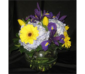 Bold & Beautiful Mom in Massapequa Park NY, Bayview Florist & Montage  1-800-800-7304