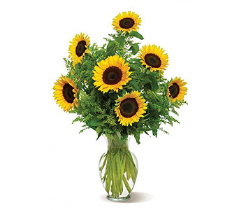 You are My Sunshine in New Paltz NY, The Colonial Flower Shop