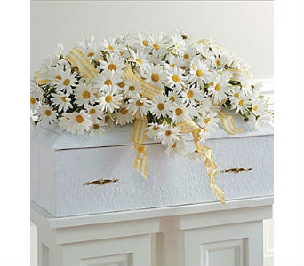 Infant Casket Spray with Daisies in Whittier CA, Ginza Florist
