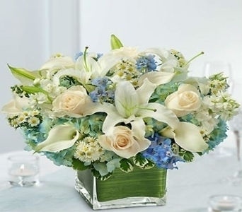 Blue And White Arrangement by Jory's Flowers in Concord CA, Jory's Flowers