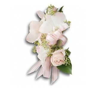 Beautiful Blush Corsage in Fairfield CT, Glen Terrace Flowers and Gifts