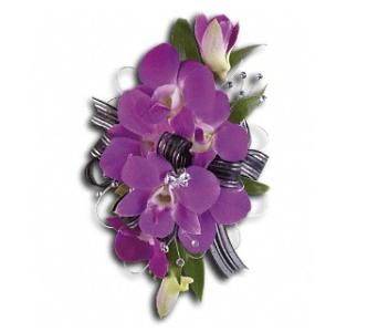 Purple Promise Wristlet in Fairfield CT, Glen Terrace Flowers and Gifts