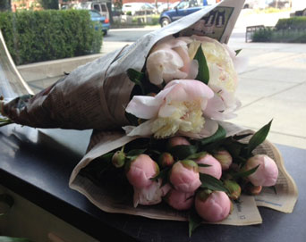 Peony Wrapped Bouquet Special! in Washington DC, Greenworks By Shane
