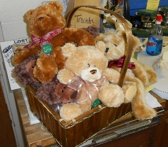 Donation of Bears in Oklahoma City OK, Trochta's