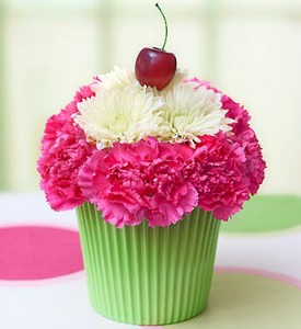 Pink and Green Cupcake  in Lemont IL, Royal Petal