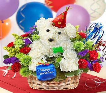 ANOTHER YEAR ROVER in Port Charlotte FL, Punta Gorda Florist Inc.