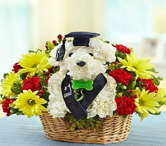 BEST IN THE CLASS in Port Charlotte FL, Punta Gorda Florist Inc.