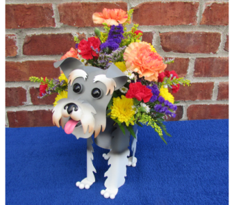 MINI SCHNAUZER PLANTER-local delivery only in Circleville OH, Wagner's Flowers