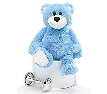 Sebastian Blue Bear in Manhasset NY, Town & Country Flowers