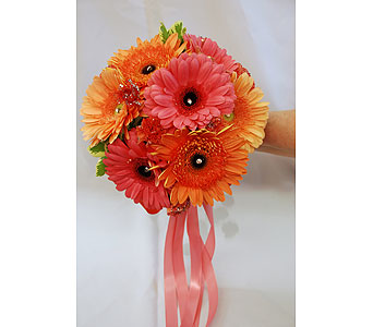 Coral Gerbera Mix Bouquet in Hales Corners WI, Barb's Green House Florist