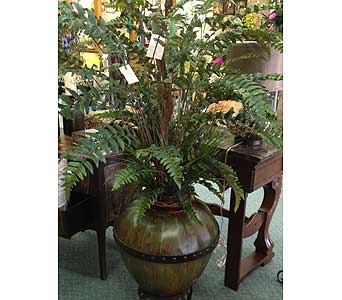 Fern in Metal Stand in New Castle PA, Butz Flowers & Gifts
