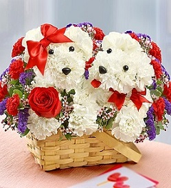 Puppy Love in Guelph ON, Patti's Flower Boutique
